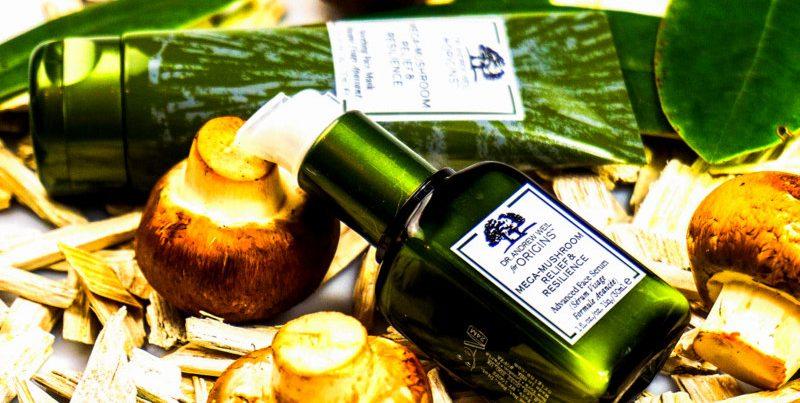 ORIGINS Dr. Weil Mega-Mushroom Relief & Resilience Advanced Face Serum & Soothing Mask - Highendlove